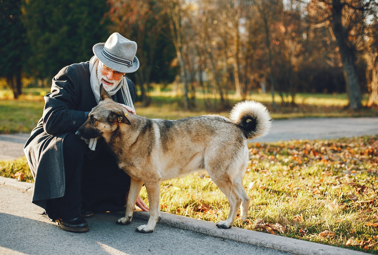 La salud mental aumenta con mascotas